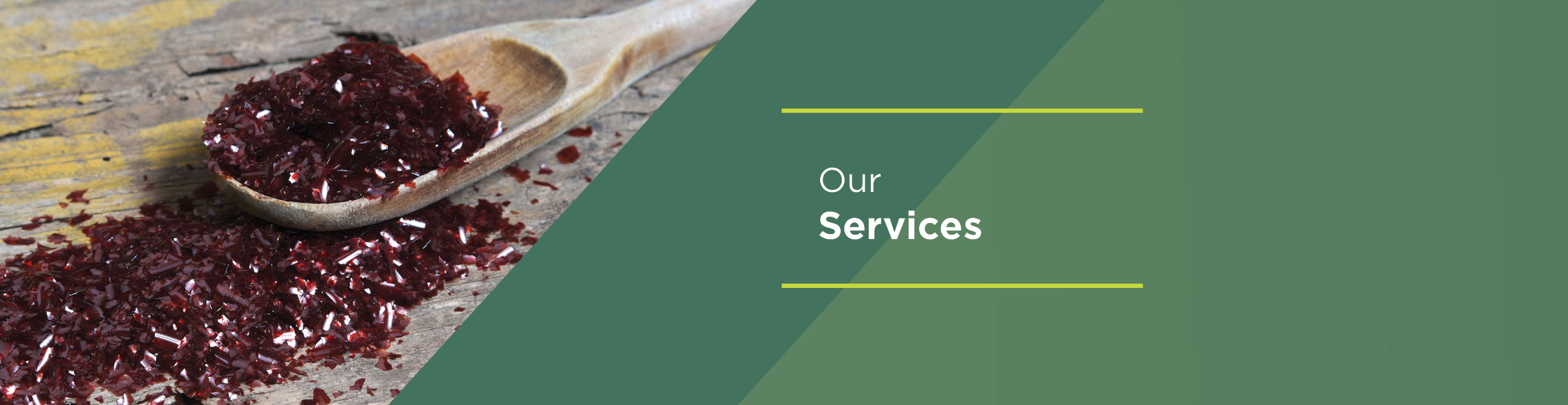 Our-Services-banner-1